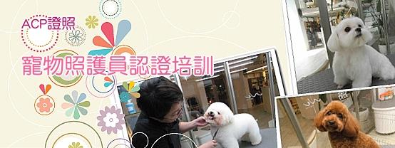 5W99sample 寵物照護員培訓認證課程  【基礎培訓】台北班班爆滿!! 確定開課,剩5個名額~