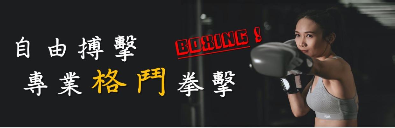 自由搏擊-專業格鬥拳擊