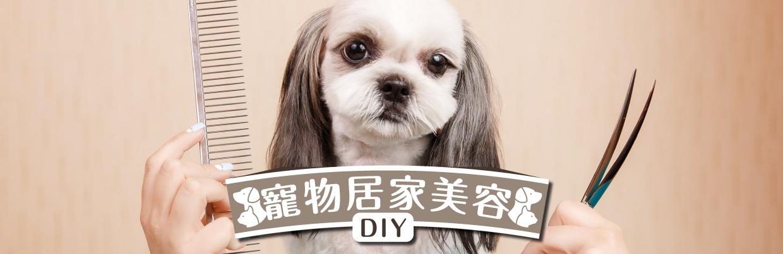 寵物美容DIY