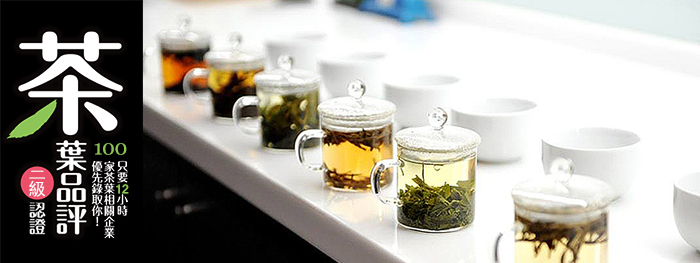 8X98sample Tea Tasting Level 2 茶葉品評二級認證 -12小時深入了解茶葉製程、風味分析及標準品評