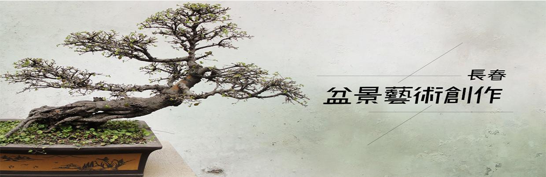 長春-盆景藝術創作